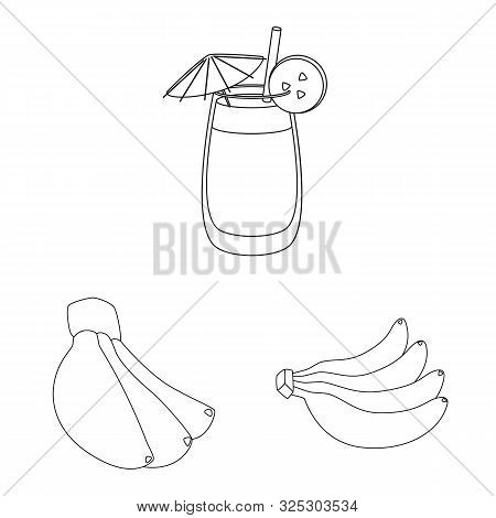 Vector Design Of Organic And Potassium Logo. Set Of Organic And Diet Stock Symbol For Web.