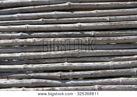 bamboo background Background of dry bamboo pattern, obsolete, foreign, poster