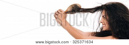 panoramic shot of stressed brunette woman with wavy unruly hair in hairbrush isolated on white poster