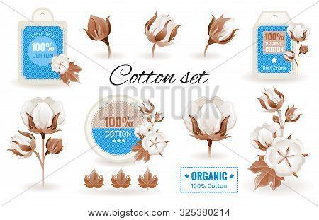 Eco Cotton Label Design Flower Set. 100 Bio Organic Cotton Tag Icon. Bud, Leaf Element. 3d Realistic