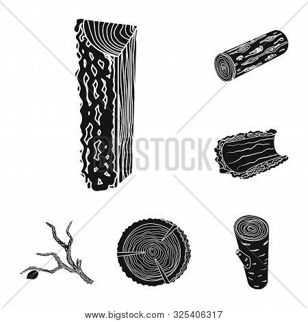 Vector Illustration Of Hardwood And Construction Icon. Collection Of Hardwood And Wood Vector Icon F