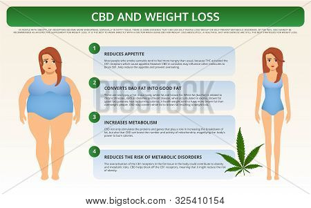 Cbd And Weight Loss Horizontal Textbook Infographic Illustration About Cannabis As Herbal Alternativ