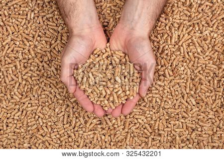 detail of hands showing wood pellets. Biomass and alternative fuel concept.