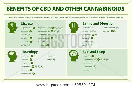 Benefits Of Cbd And Other Cannabinoids Horizontal Infographic Illustration About Cannabis As Herbal
