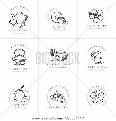 Vector Set Design Monochrome Templates Logo And Emblems - Organic Herbs And Teas . Different Teas Ic
