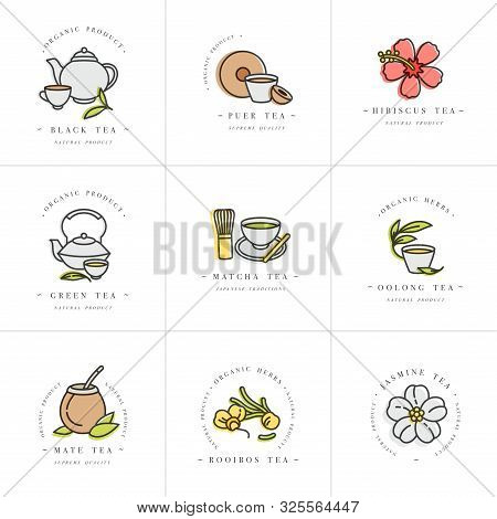 Vector Set Design Colorful Templates Logo And Emblems - Organic Herbs And Teas . Different Teas Icon