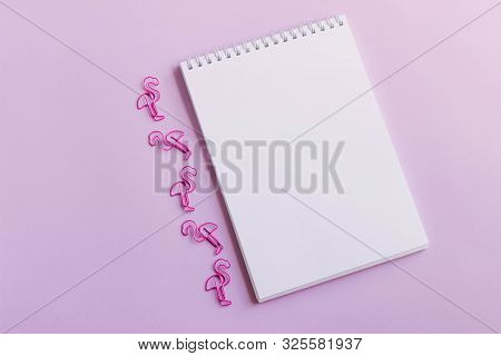 A Blank Notebook And Pink Paper Clips. A White Sheet Of Notepaper Surrounded By Pink Flamingo-shaped