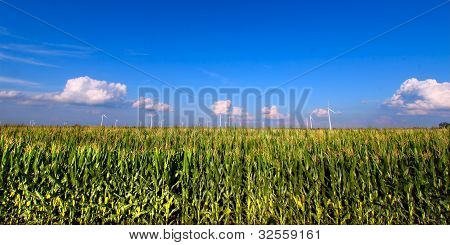 Illinois Agricultural Land