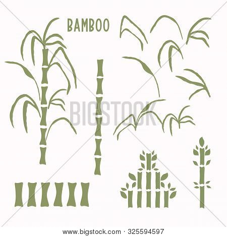 Hand Drawn Bamboo Stem Clip Art Motif Collection. Set Of Modern Wagara Japanese Style Icons. Soft Gr