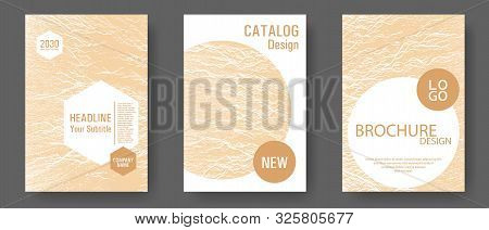Magazine Cover Layouts Vector Design. Sand Or Bamboo Color Waves Textures. Stylish Magazine Template
