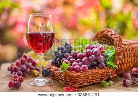 Autumn still life with ripe different grape varieties and wine glass. Behind the beautiful autumn bokeh.
