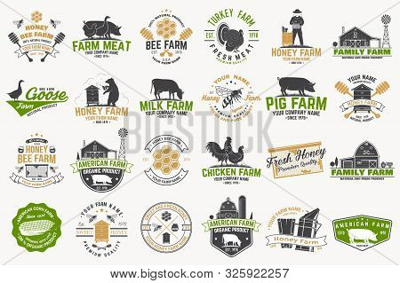 American Farm And Honey Bee Farm Badge Or Label. Vector. Vintage Typography Design With Bee, Honeyco