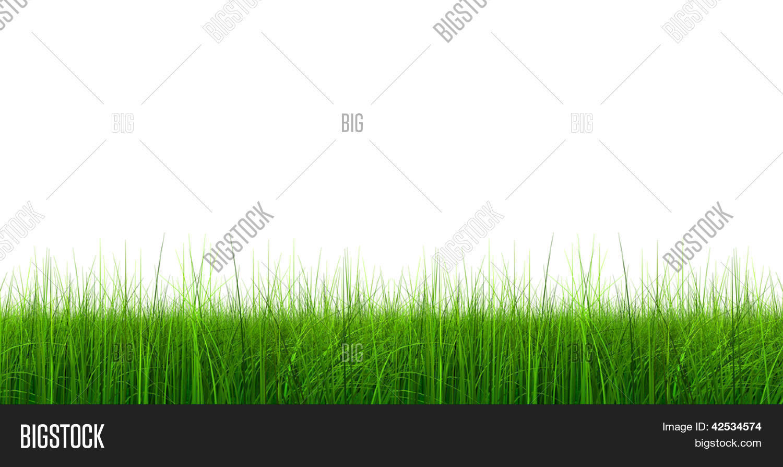 High Resolution Green Image Photo Free Trial Bigstock