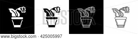 Set Flower In Pot Icon Isolated On Black And White Background. Plant Growing In A Pot. Potted Plant