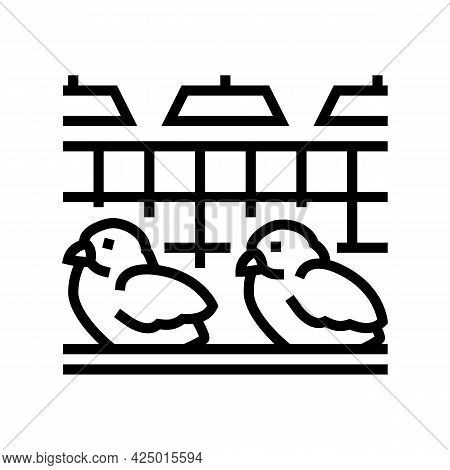 Chick In Poultry Farm Line Icon Vector. Chick In Poultry Farm Sign. Isolated Contour Symbol Black Il
