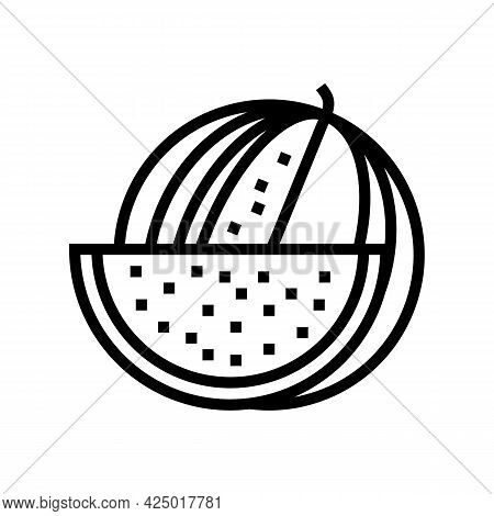 Watermelon Summer Berry Line Icon Vector. Watermelon Summer Berry Sign. Isolated Contour Symbol Blac