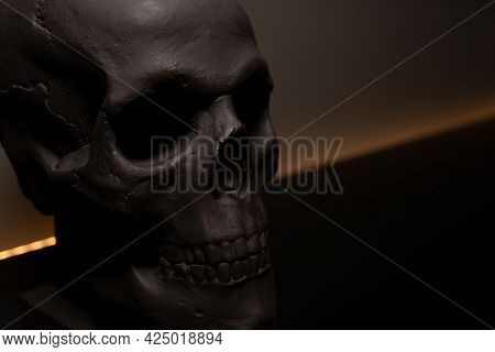 Decorative Black Skull. Place For Text. Bust Of The Skull. Beautiful Home Decor For The Interior. Co
