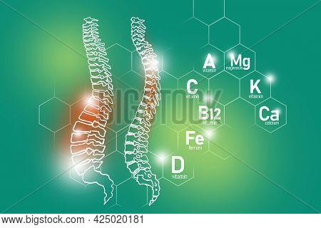 Essential Nutrients For Spine Health Including Magnesium, Vitamin B12, Calcium, Ferrum. Design Set O