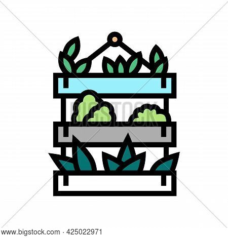 Potted Domestic Plant Color Icon Vector. Potted Domestic Plant Sign. Isolated Symbol Illustration