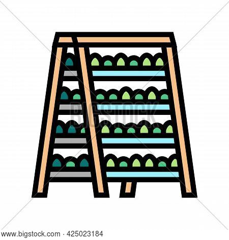 Domestic Plant On Shelves Color Icon Vector. Domestic Plant On Shelves Sign. Isolated Symbol Illustr