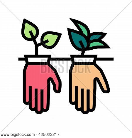 Plant Growing From Gloves Color Icon Vector. Plant Growing From Gloves Sign. Isolated Symbol Illustr