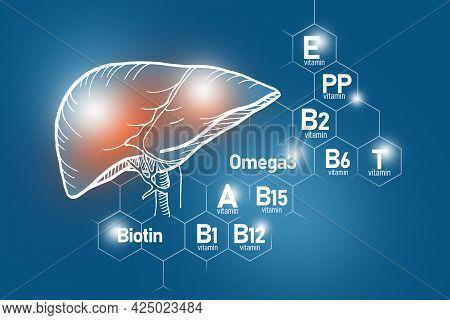 Essential Nutrients For Liver Health Including Omega-3, Carnitine, Biotin, Vitamin Pp, Vitamin B. De