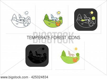 Temperate Forest Icons Set.forest Found Between Tropical, Boreal Regions, Located In Temperate Zone.