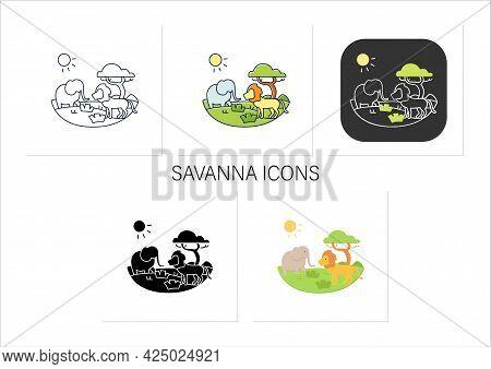 Savanna Icons Set. Living Place For Powerful Predators. Grasslands Biome. Dangerous Place. Lion, Ele