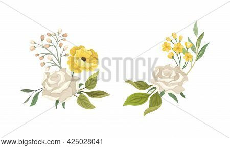 Flower Composition With White Rose And Floral Leafy Branches Vector Set