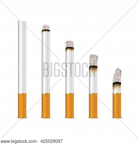 Vector 3d Realistic Cigarette Set Closeup Isolated On White Background. Different Stages Of Burn. Wh
