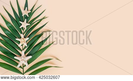 Palm Leaf And Sea Stars On Neutral Beige Background. Exotic Tropical Summer Background. Travel And V
