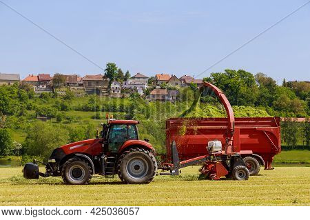 A Tractor With Forage Harvesters Removes The Cut Grass From The Field For Silage Filling The Tractor