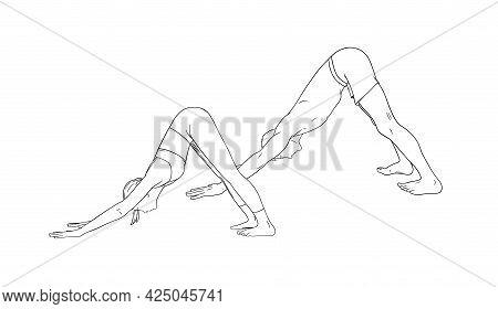 Yoga Downward Facing Dog Pose Or Svanasana. Woman And Man Practicing Yoga. Sketch Vector Illustratio