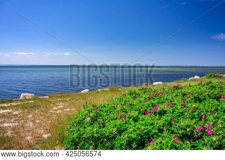 Beautiful landscape of the Puck Bay on the Hel Peninsula in summer. Poland