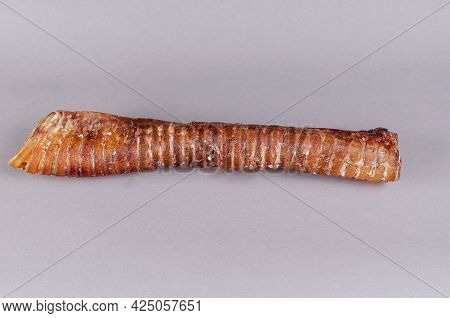 Air Dried Treats For Dogs. Dental Treats. 20-inch Dried Beef Trachea On A Gray Background. Pets