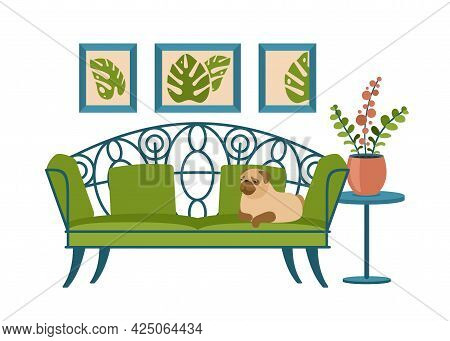 Vintage Interior Couch With Sleeping Pug. Dog Lies On Green Openwork Sofa. Wall Paintings With Plant