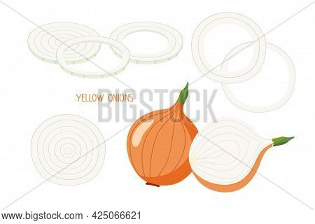 Onion. Ordinary Yellow Or Brown Onions Isolated On White. Whole Bulb, Half, Chopped Rings. Flat Desi