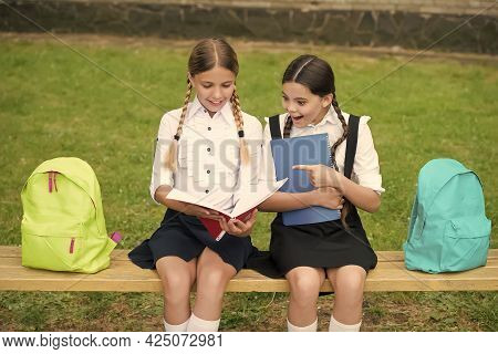 The More You Read, The More You Learn. Little Children Read Book Sitting On Bench. School Education.