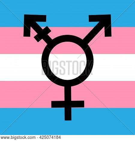 Vector Flat Trans Transgender Transsexual Flag Symbol Isolated On White Background