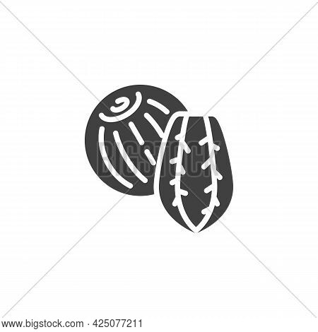 Brazil Nut Vector Icon. Filled Flat Sign For Mobile Concept And Web Design. Brazil Nut Shell Glyph I
