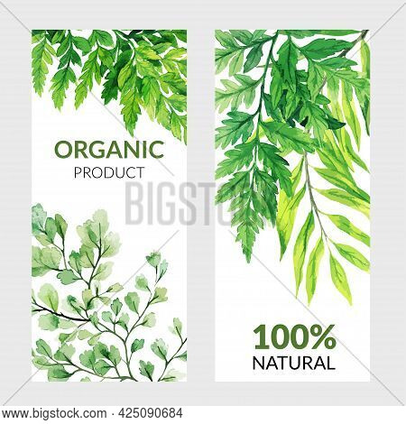 Set Of Two Vertical Banners With Green Ferns