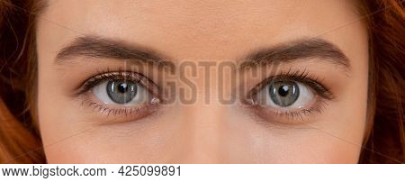 Beautiful Female Eyes With Arched Eyebrows And Natural Eye Makeup, Eyesight