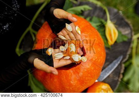 Girl, Little Child Hands Who Pulls Seeds And Fibrous Material From A Pumpkin Before Carving For Hall