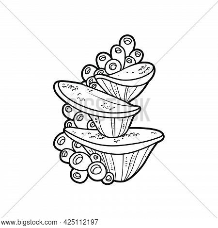 Tall Sponge With Anemones Growing On A Stone Coloring Book Linear Drawing Isolated On White Backgrou