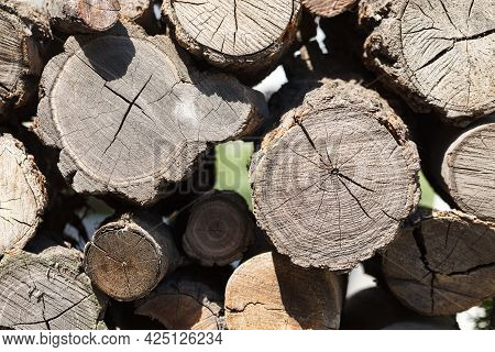Wood Pile Reserve For The Winter. Pile Of Chopped Firewood. Background Texture Wood. Wood Logs Stora