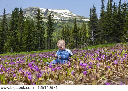 Boy On A Meadow In The Mountains. Sheregesh, Russia