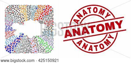 Vector Collage Kazakhstan Map Of Different Symbols And Anatomy Seal Stamp. Collage Kazakhstan Map De