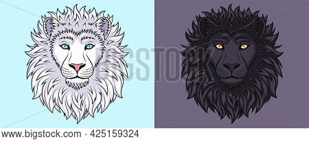 White And Black Lion Head With Blue And Golden Eyes, Isolated Lion Face. Predatory Wildcat. Lion Sil