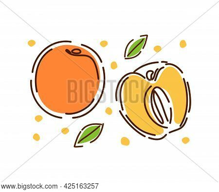 A Whole Juicy Peach And Half, A Set Of Fruits And Leaves. Fresh Peaches Are Isolated On A White Back