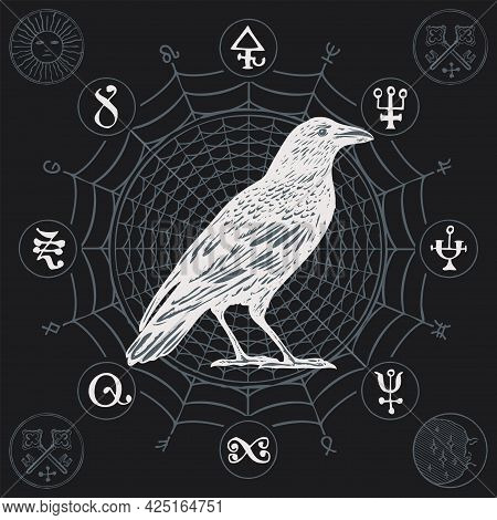 Banner On The Theme Of Witchcraft With A Wise White Crow In Vintage Style. Vector Illustration With